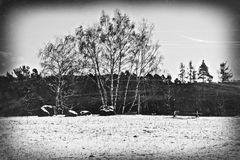einsam in der Kälte