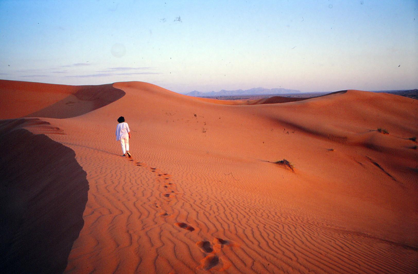 einsam in der Wüste von Dubai
