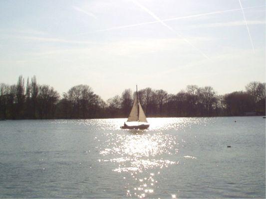 einsam segelt ein Boot über den Maschsee