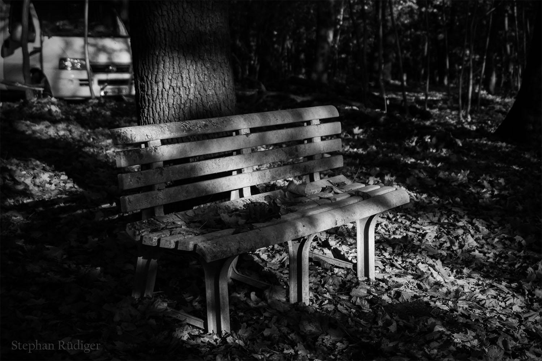 Einsame Bank im Wald