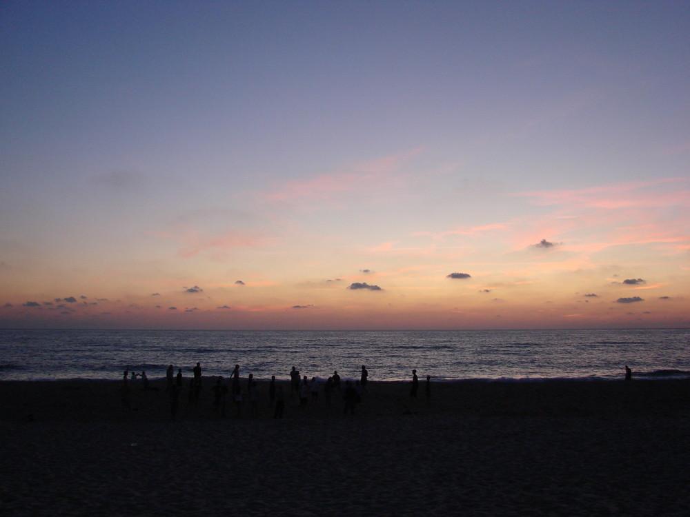 Einsame Horde im Sonnenuntergang