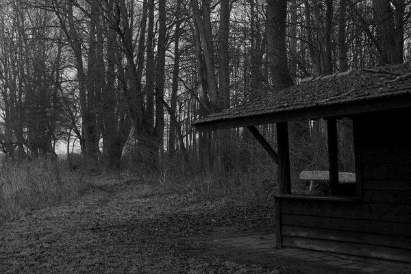 Einsame Hütte im dunklen Wald