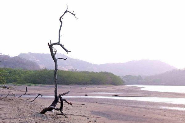 Einsame Küste