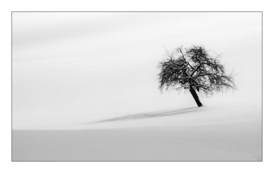 einsame Stille