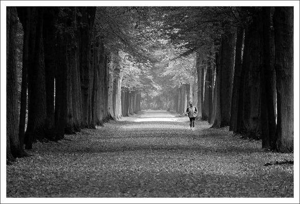 Einsamer Läufer
