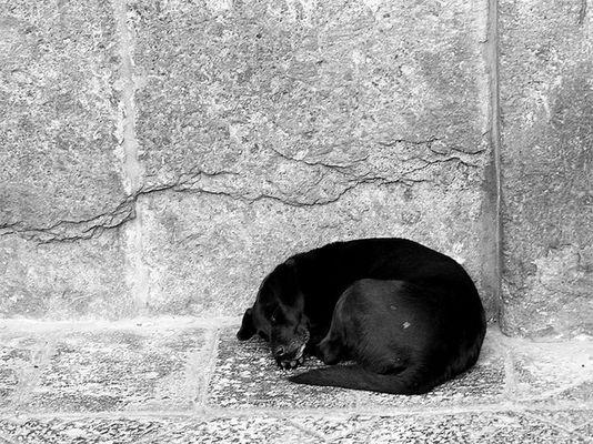 Einsamer Schlaf