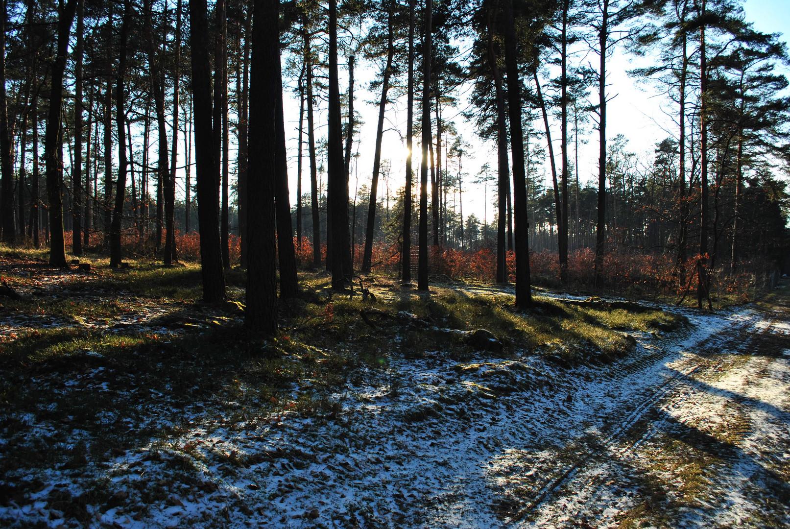 einsamer Sonntagsspaziergang