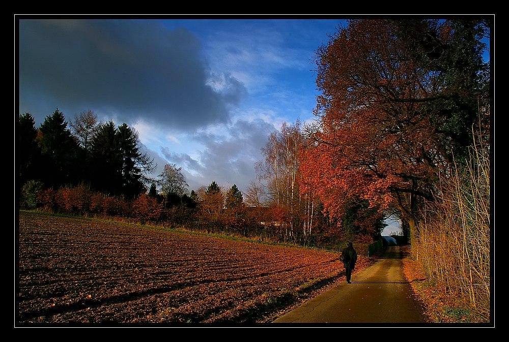 Einsamer Spaziergang....