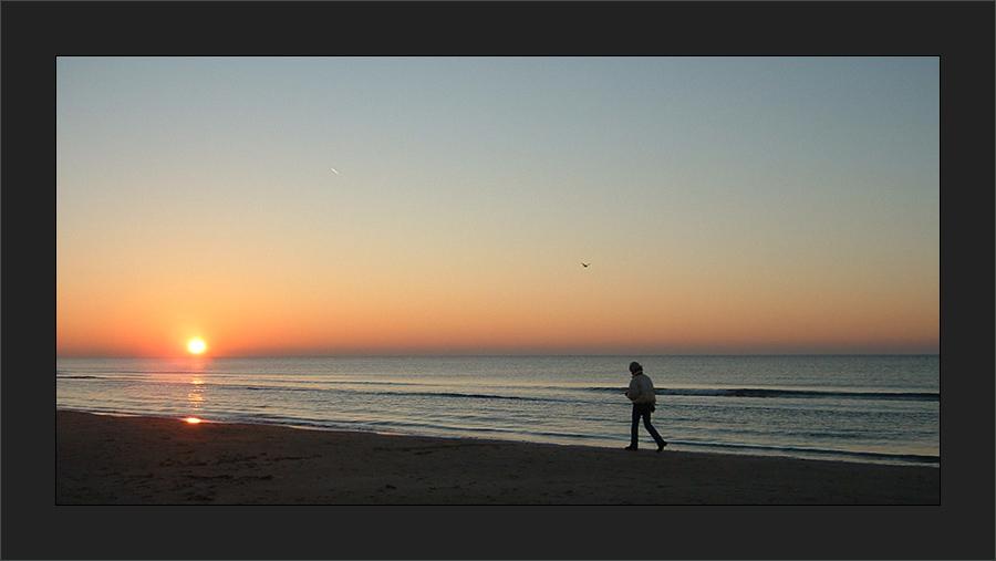 Einsamer Strandläufer in Dänemark