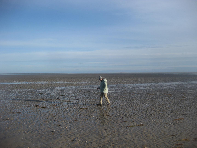 einsamer Wanderer im Watt