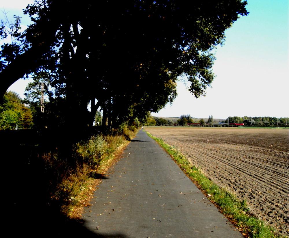 einsamer Weg
