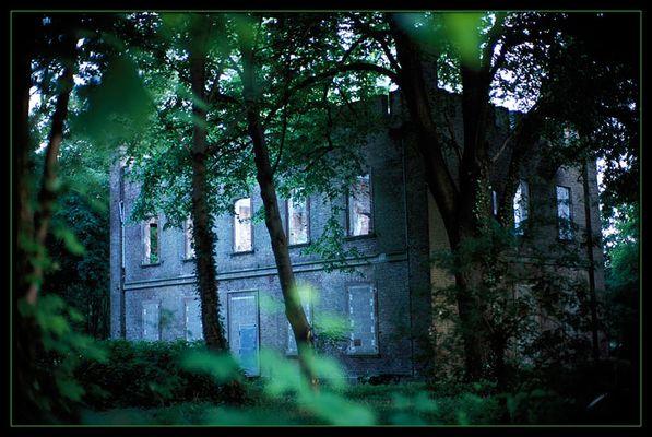 Einsames Haus im Wald