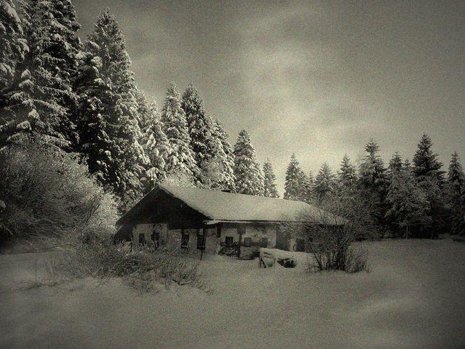 Einsames Holzhaus