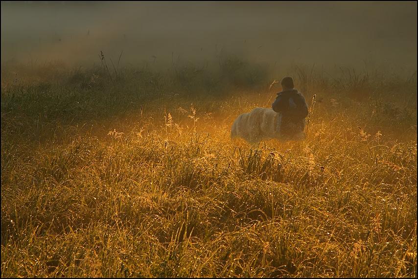 Einsames Kind mit Hund... ;-)