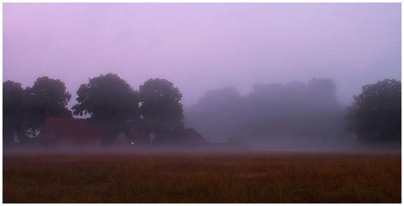 Einsames Licht im Nebel