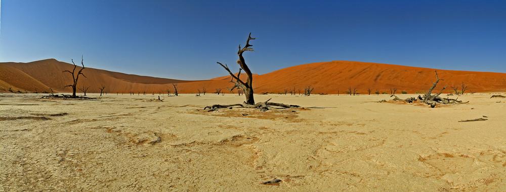 Einsamkeit -- Deadvlei - Namibia