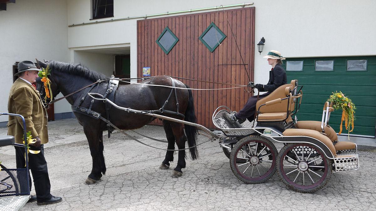 Einspänner Pferdekutsche