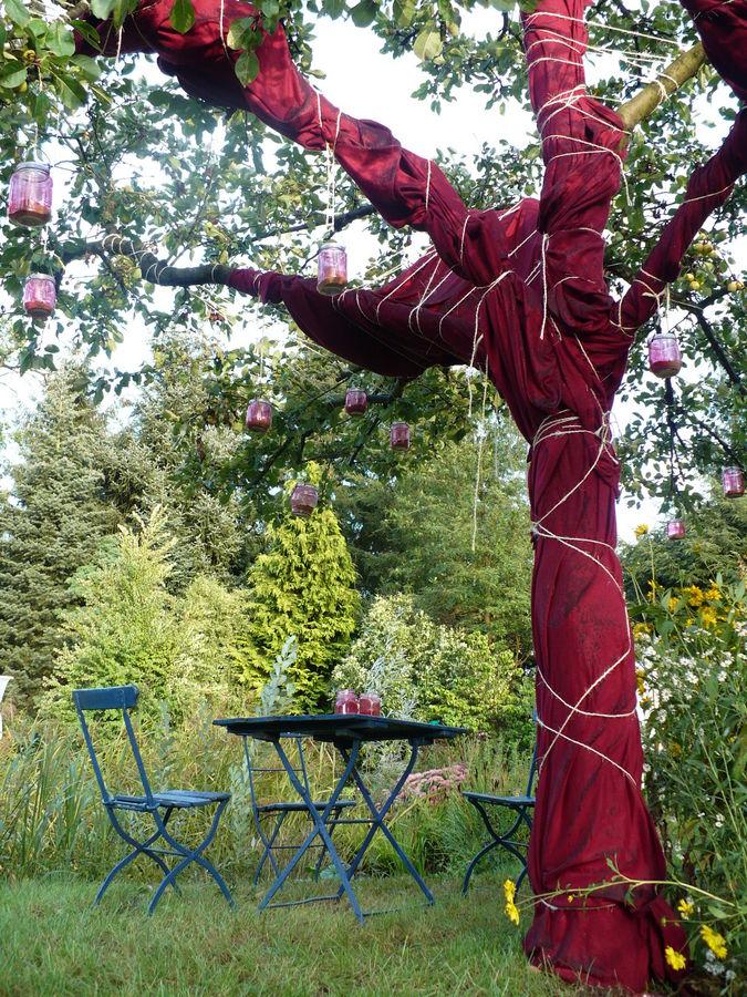 Eintags- Garten- Metamorphose in Seethen/Altmark