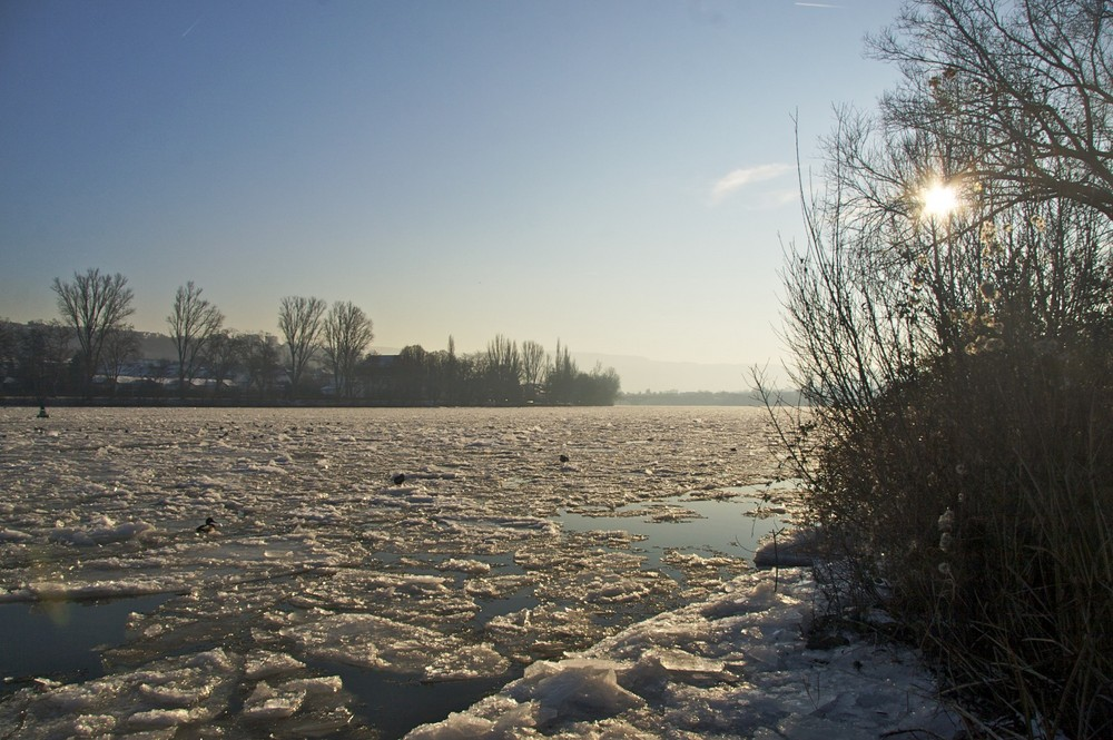 Eis auf der Mosel