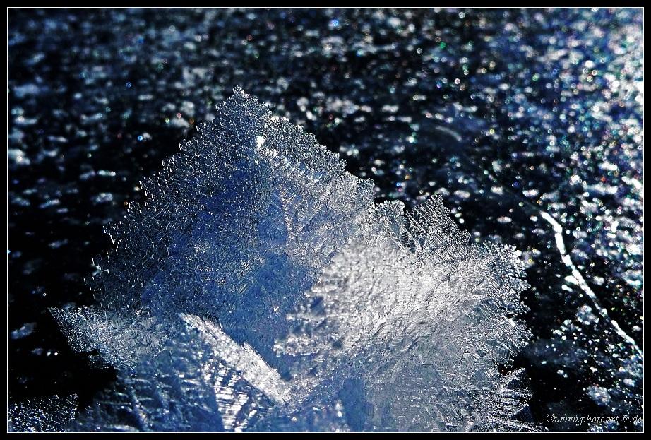 Eis-Kosmos Winter 2008/2009 (9)