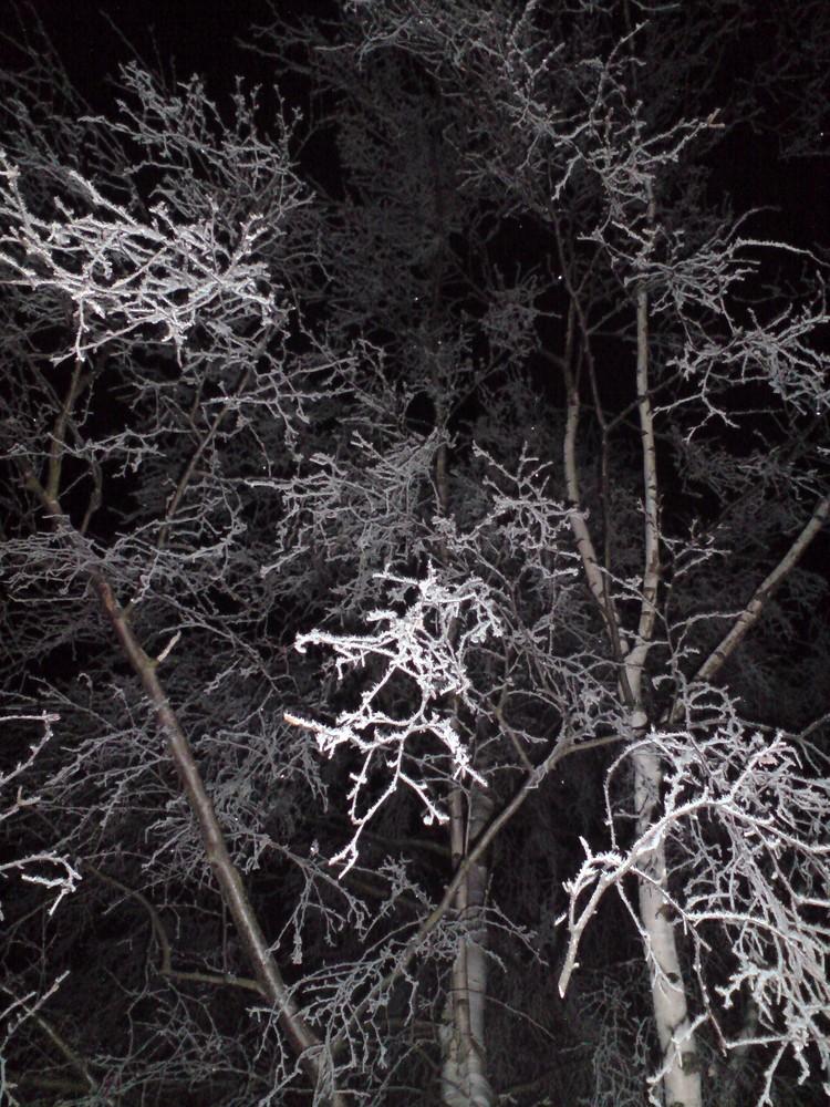 Eis und Natur