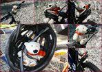 Eisbär auf Fahrradtour