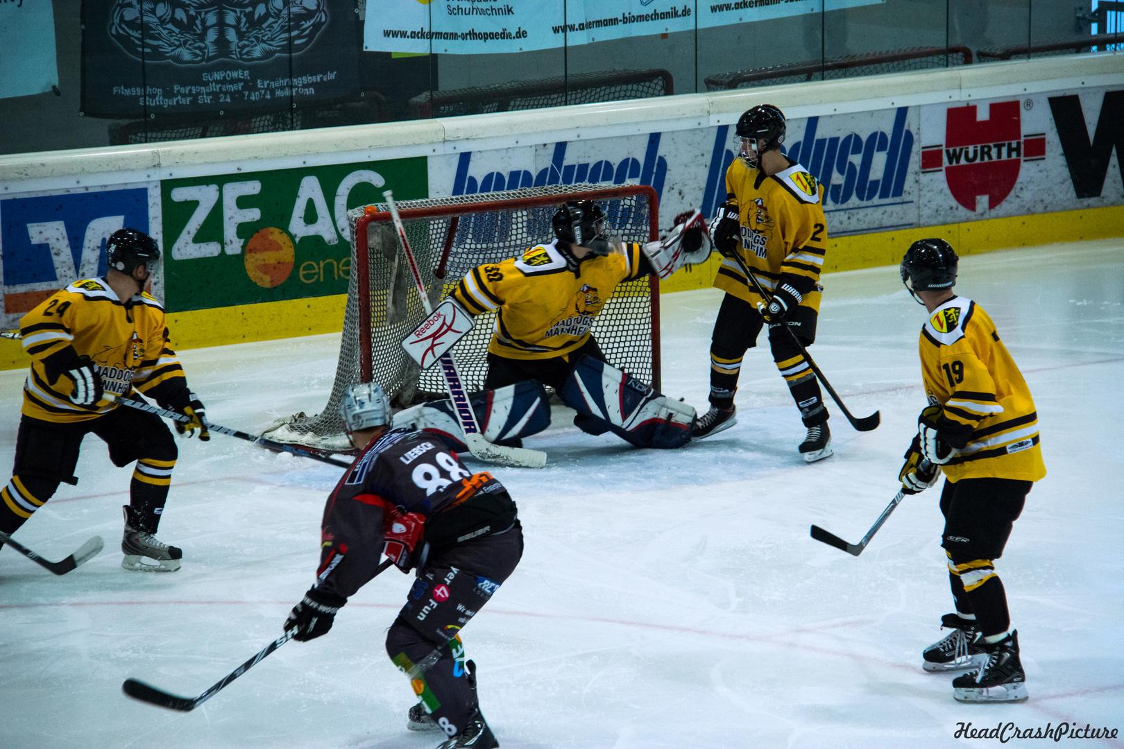Eisbären Heilbronn vs Mad Dogs Mannheim