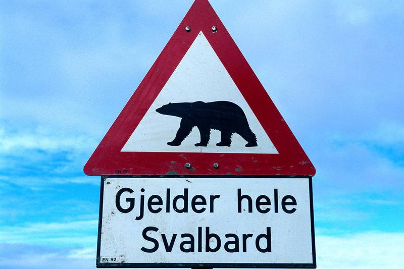 Eisbärwarnung Nahe Longyearbyen