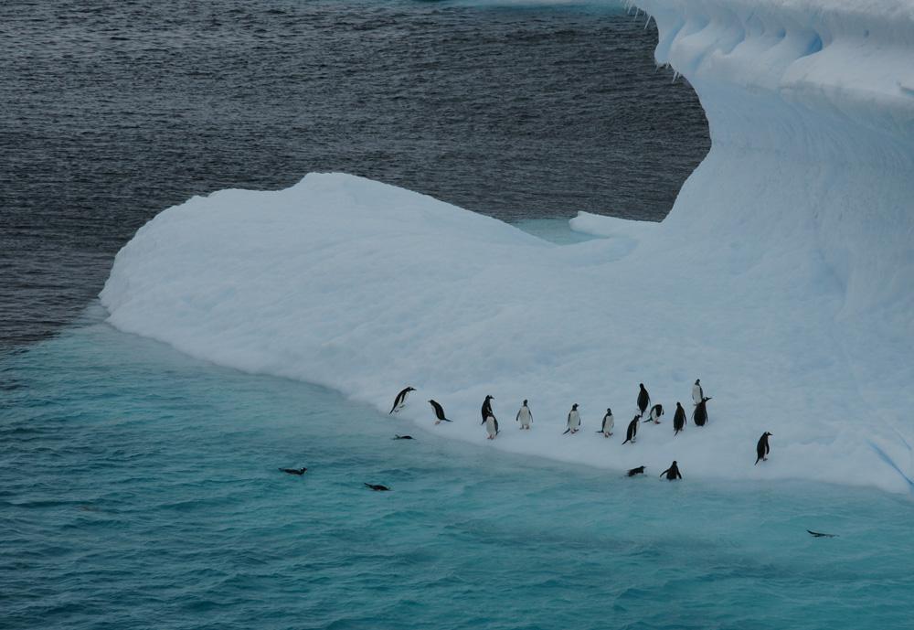 Eisberg mit Besatzung 4