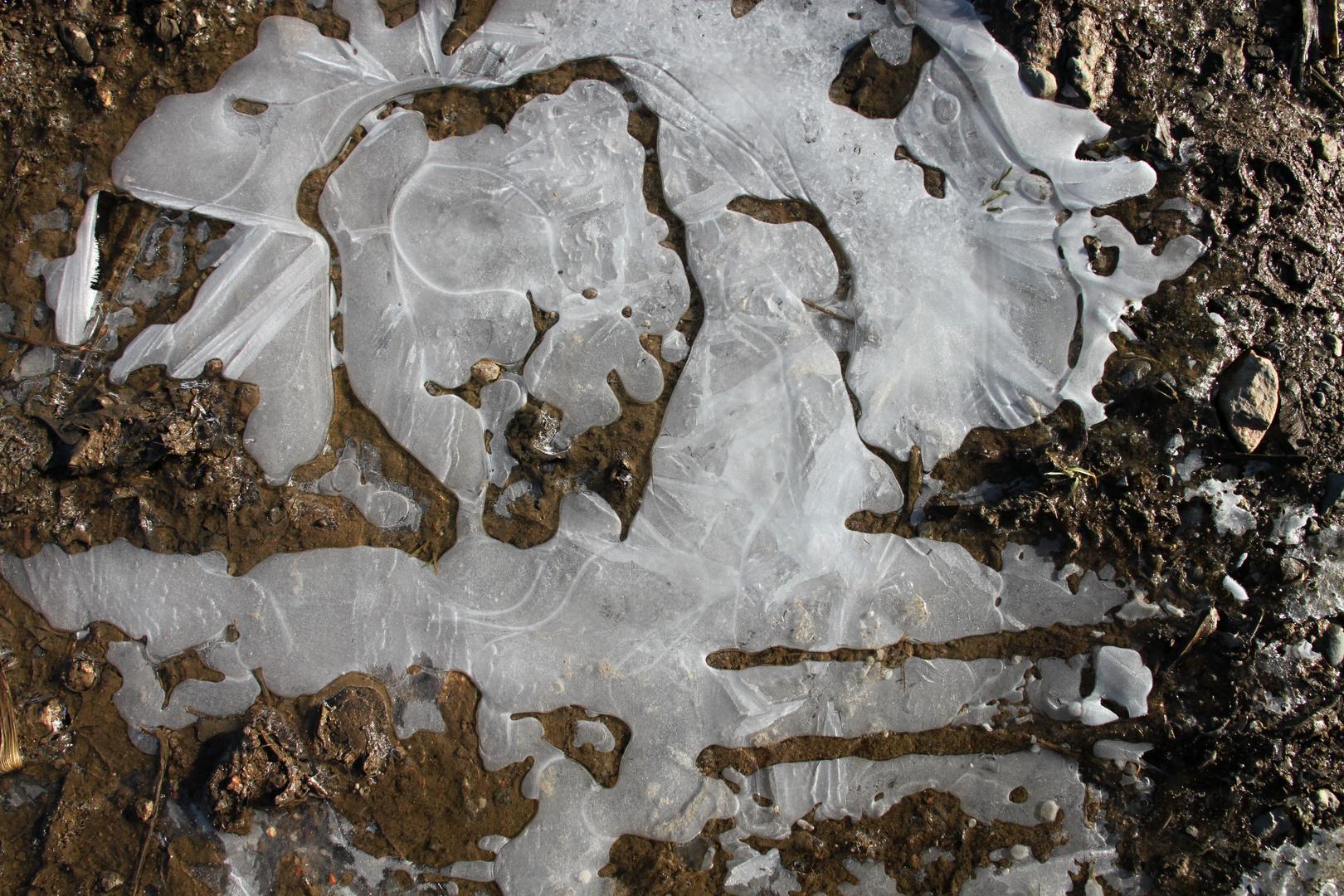 Eisbilder