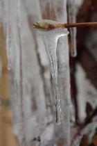 Eisbildung