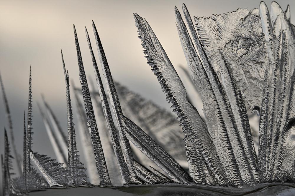 Eisblumen.. 2
