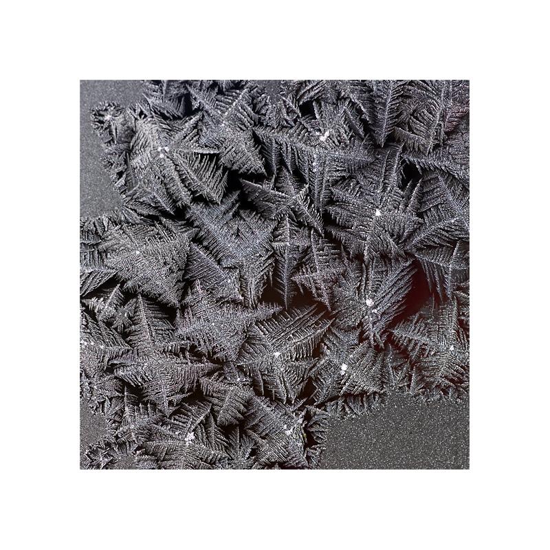 Eisblumen # 5