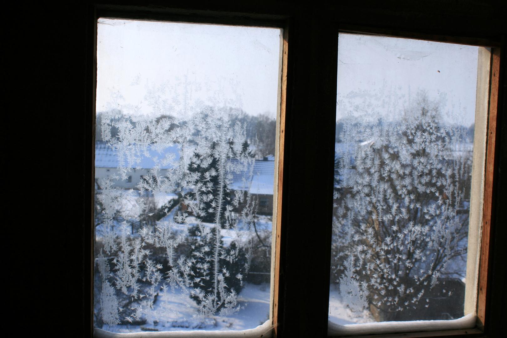 eisblumen am fenster foto bild jahreszeiten winter baruth bilder auf fotocommunity. Black Bedroom Furniture Sets. Home Design Ideas