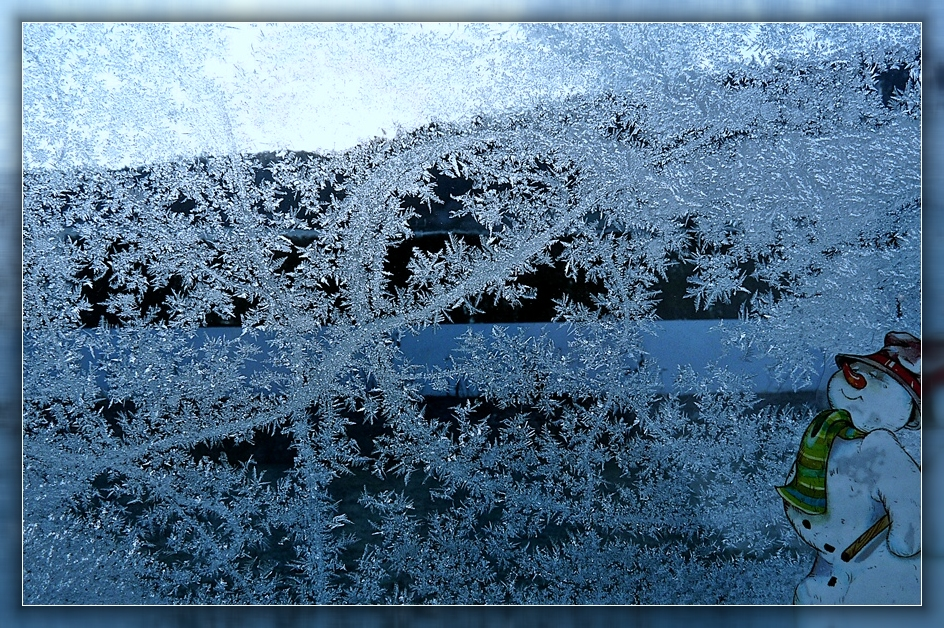 Eisblumen am Fenster