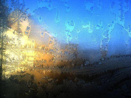 Eisblumen - Minus 10 Grad in Berlin