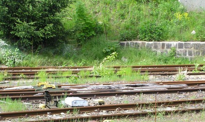Eisenbahn im Grünen