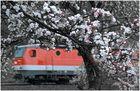 Eisenbahnfrühling