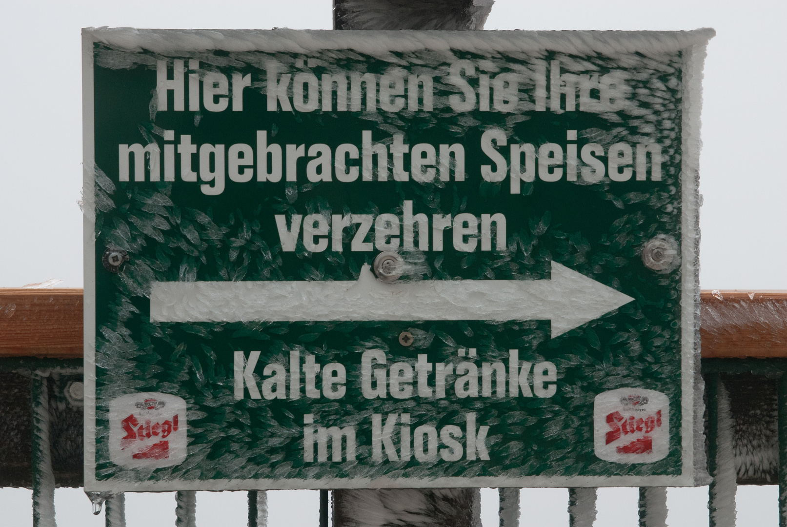 Eiseskälte auf dem Schafberg III