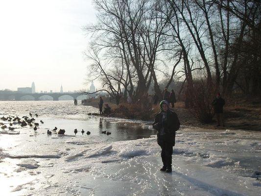 Eisgang an der Elbe