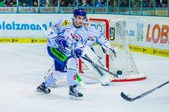 Eishockey - DEL - Iserlohn Roosters - Straubing Tigers 1/4