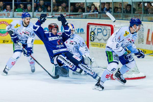 Eishockey - DEL - Iserlohn Roosters - Straubing Tigers 2/4