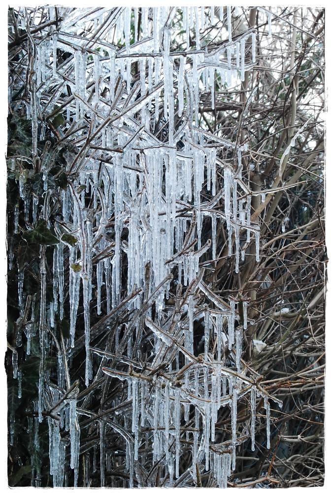 Eisig ist der Winter