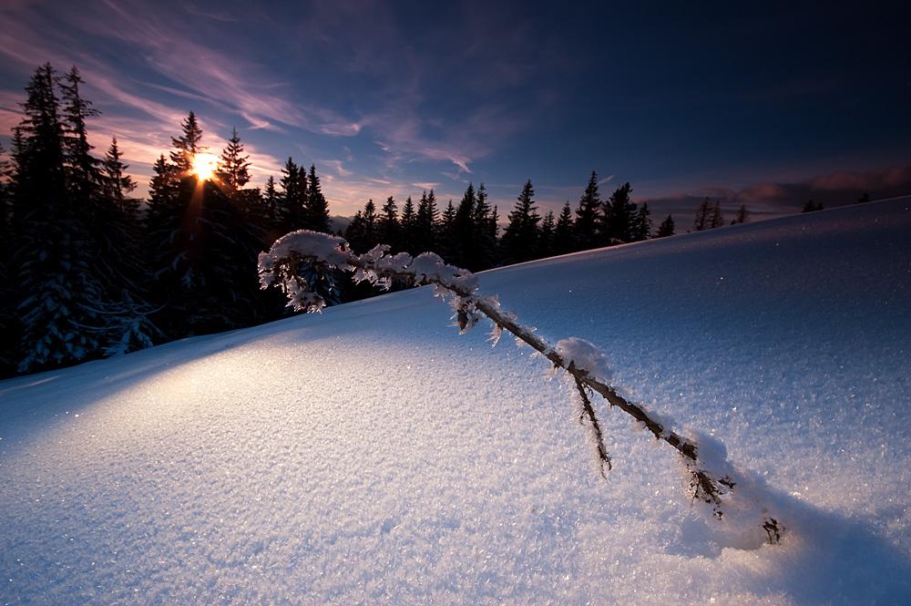 Eisige Stille... von Tim Komm