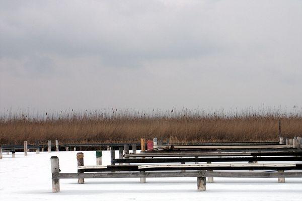 ...eisige Stille am Neusiedlersee