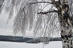 Eisige Zeiten (2)