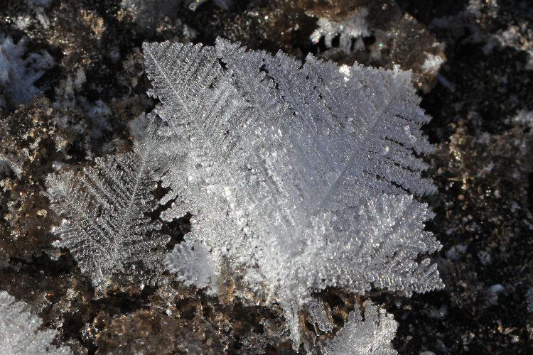 Eisige Zeiten (3)