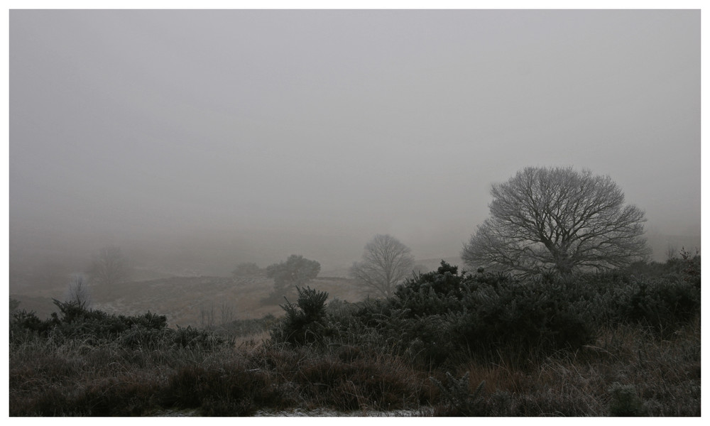 eisiger Nebel