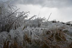 Eisiger Wind