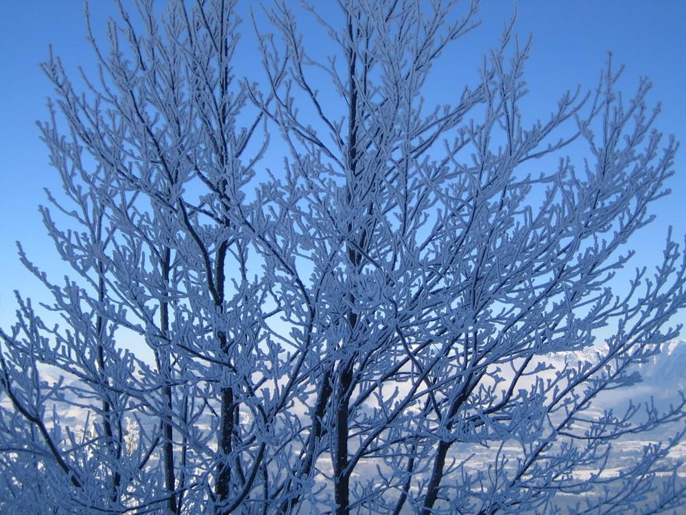 Eisiger Wintertag